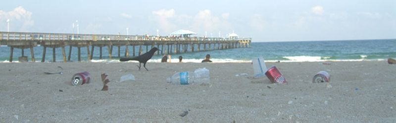 Litter at Pier adjusted