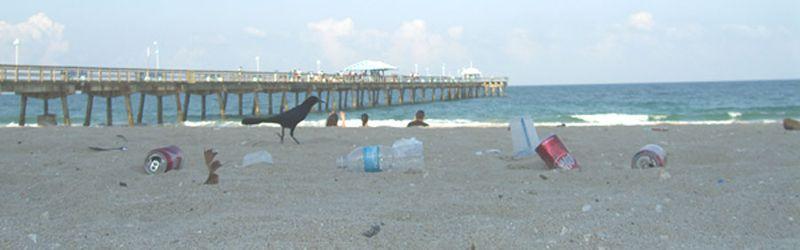 Litter at Pier adjusted