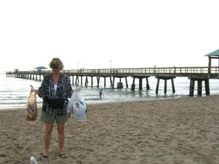Litter collected June 29, 2009