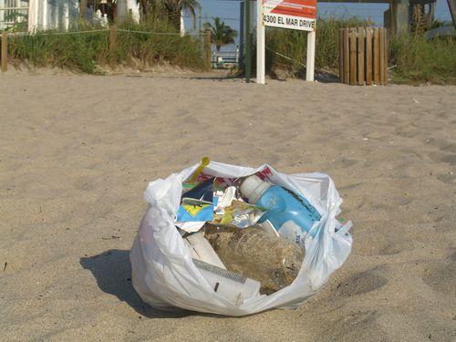 June 11, 2009 1 bag of litter from shore