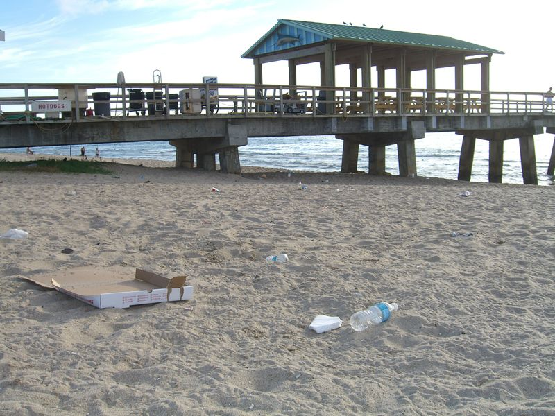 Litter July 15, 2009 S of Anglin's Pier