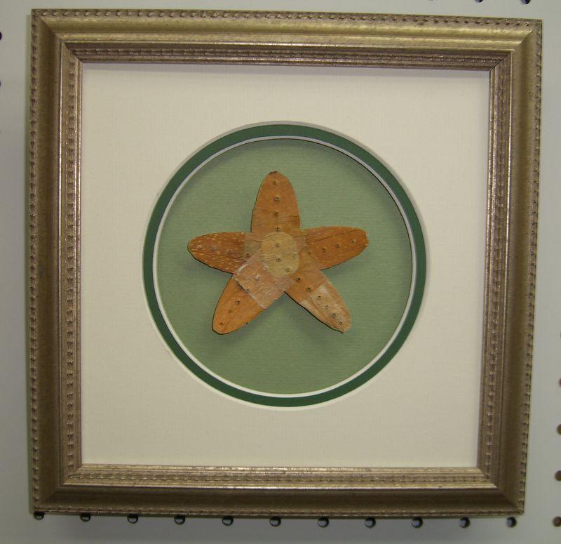 MuseumofLitter Starfish #1
