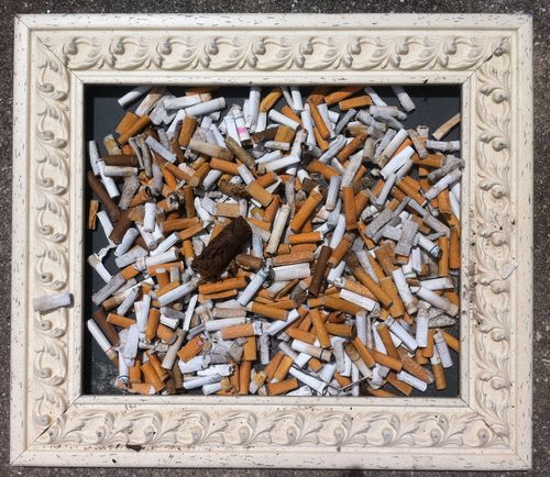 529 littered cigarette butts collected 9-3-11 in beachy frame