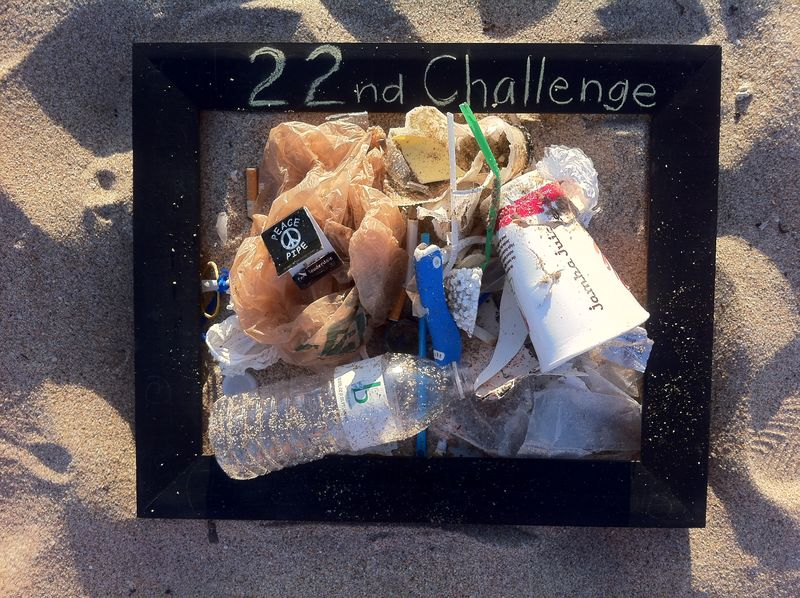 22nd Challenge for Earth Day 2011 blog